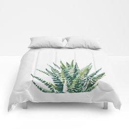 Zebra Cactus Comforters