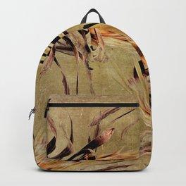 Vintage White Pride Proteas Backpack