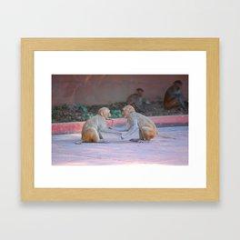 Monkey Fight Framed Art Print