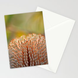 Banksia Fire Stationery Cards