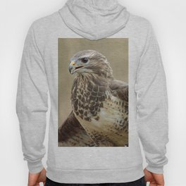 magnificent falcon Hoody