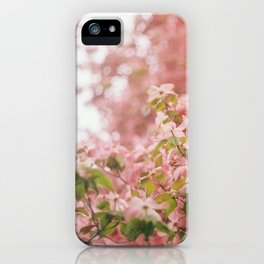 dogwood iPhone Case