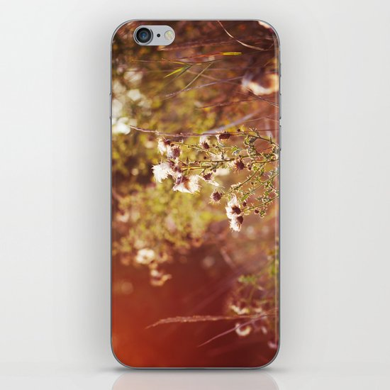 golden dandelions. iPhone & iPod Skin