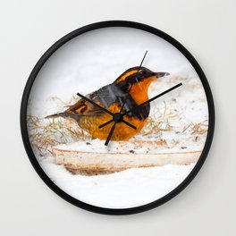Varied Thrush in the Snow Wall Clock