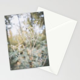 Forest (I) Stationery Cards