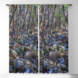 Yosemite Woodland Blackout Curtain