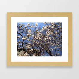 Spring and the City Framed Art Print