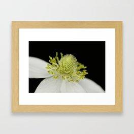 SnowDrop Macro Framed Art Print