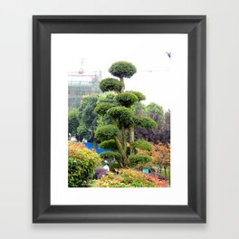 Yueyang garden | Jardin Yueyang Framed Art Print