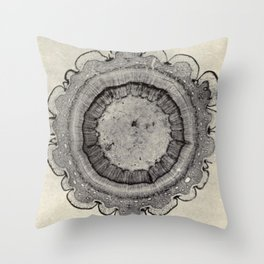 Spruce Branch Throw Pillow