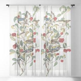 Audubon warbler, Birds of America, Audubon Plate 395 Sheer Curtain