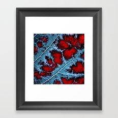 leaf structure macro III Framed Art Print