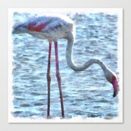 Balance of Nature Flamingo Watercolor Canvas Print