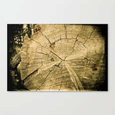 150 Years Old Canvas Print