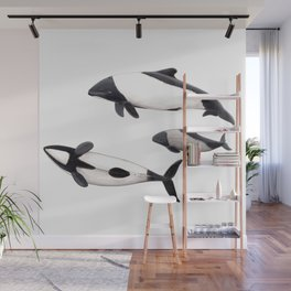 Commerson´s dolphins Wall Mural