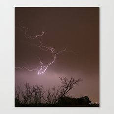 Amplified Canvas Print