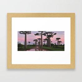 Baobab Highway Framed Art Print