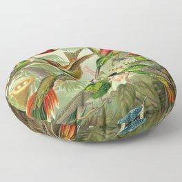 Ernst Haeckel Trochilidae 1904 Poster Floor Pillow
