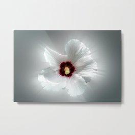 glowing white petals Metal Print