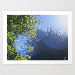 Sun/Trees Art Print