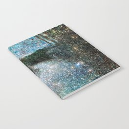 Riverwalking Notebook