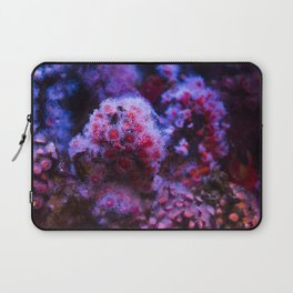 Under the Sea Blooming Magenta Coral Reef Sea anemone Underwater Photography Colored Lustre Print Laptop Sleeve