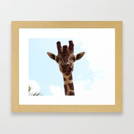 Silly Giraffe Framed Art Print