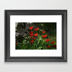 Anemones and Rock Framed Art Print
