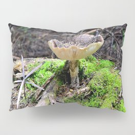 Wild Mushroom Pillow Sham