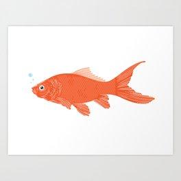 goldfish. Art Print