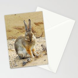 Rabbit at the Petroglyph National Monument - 001 Stationery Cards