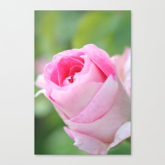 Vintage Flower Bud Canvas Print