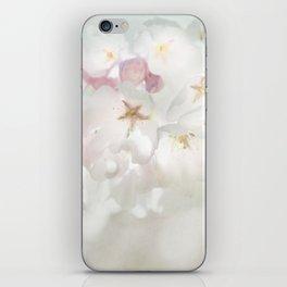 Abundance of Joy iPhone Skin
