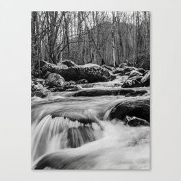Water Flowing in the Smoky Mountains Canvas Print
