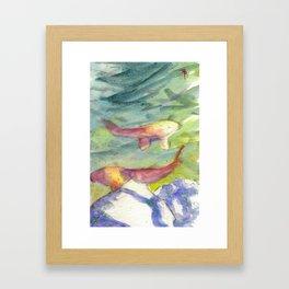 Small Koi Pond 22 Framed Art Print