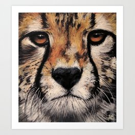 Cheetah, Savannah Hunter Art Print