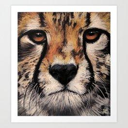 Cheetah, Savannah Hunter Art Print