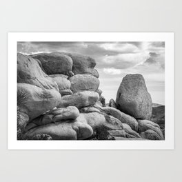Big Rock 7411 Joshua Tree Art Print