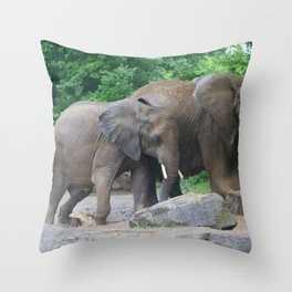 Mud Bath Throw Pillow