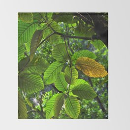 Backlit Leaves in the Peruvian Amazon Throw Blanket