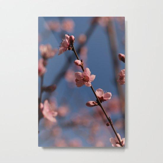 Pure Spring Yeah Metal Print