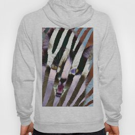Cat on steroids Hoody
