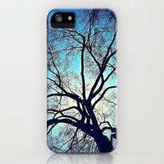 'DREAM' iPhone (5, 5s) Slim Case