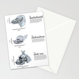 Dog Skull Comparison Stationery Cards