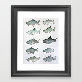 Cute Watercolor Sharks - Ocean Watercolor Art Framed Art Print