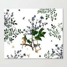 Monkey World: Apy and Vinnie - White Canvas Print