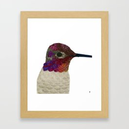 Anna's Hummingbird Framed Art Print