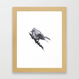 Bird Handmade Drawing, Art Sketch, Uccellino, Illustration Framed Art Print