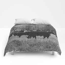 Black & White Cattle Grazing Pencil Drawing Photo Comforters