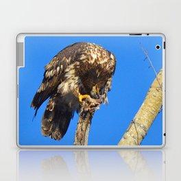 Houdini in Feathers! Laptop & iPad Skin